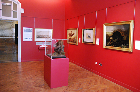 The intimate Audubon Gallery © University of Liverpool Victoria Gallery & Museum